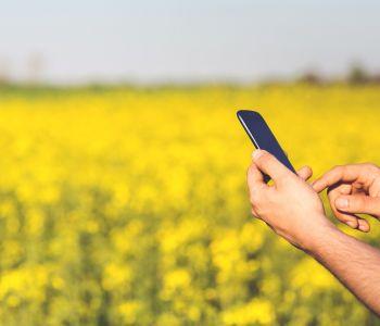 EU op weg naar 365 dagen per jaar gratis roaming