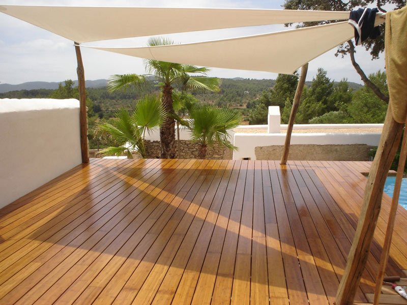 de tuindokter bekijk bamboe met andere ogen wist je dat. Black Bedroom Furniture Sets. Home Design Ideas