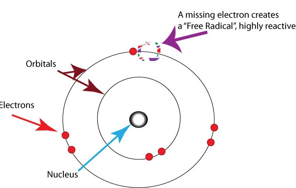 Free-radicals-oxygen_1