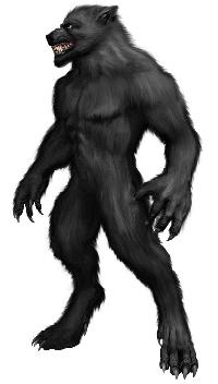 werewolf-1566753_960_720