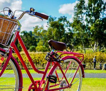Wandel of fiets je fit! 10 voordelen voor je gezondheid