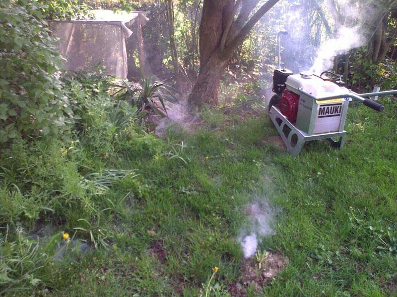 rattenholen in de tuin