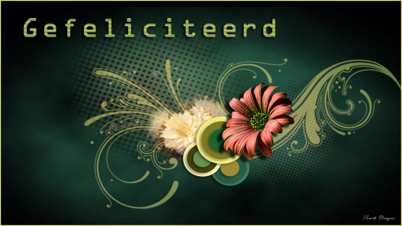 SeniorenNet - de startpagina voor senioren: de nieuwe 50-plussers: www.seniorennet.be/Magazine/artikel/32/vind-jij-verjaardagen...