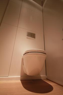 Ook is het toilet wat hoger geplaatst zodat je gemakkelijer kan gaan zitten en rechtstaan.