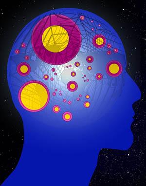 /80/Psychologie/Brein.jpg