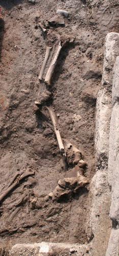 /95/Mysterie/Skelet.jpg